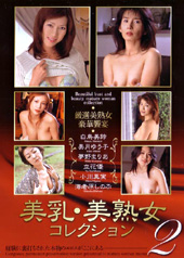 美乳美熟女コレクション 2