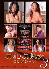 美乳美熟女コレクション 3
