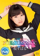 PREMIUM MAX桜...